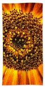 Sunflower Macro Beach Towel