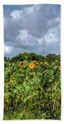 Sunflower Maze Beach Towel