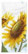 Sunflower Perspective Beach Sheet