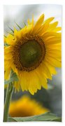 Sunflower Portrait Beach Towel