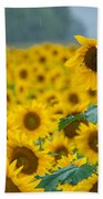 Sunflower Rain Sussex Nj Beach Towel