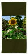 Sunflower Sally Beach Towel