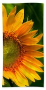 Sunflower Single Beach Towel