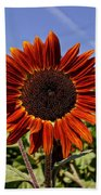Sunflower Sky Beach Towel by Kerri Mortenson