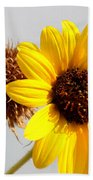 Sunflower Stages Beach Towel