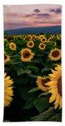 Sunflower Sunset II Beach Towel