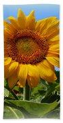 Sunflower Sunshine Beach Towel
