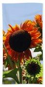 Sunflower Symphony Beach Towel