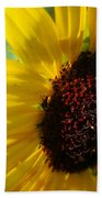 Sunflower Two Beach Towel