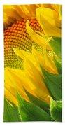 Sunflower Unfolding  Beach Towel