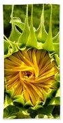 Sunflower Whirl Beach Towel