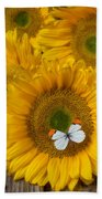 Sunflower With White Butterfly Beach Towel