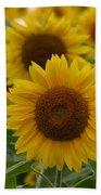Sunflowers At The Farm Beach Towel