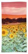 Sunflowers, Corbada, Spain Beach Towel