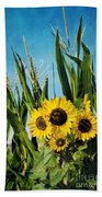 Sunflowers In The Corn Field Beach Towel