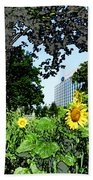 Sunflowers Outside Ford Motor Company Headquarters In Dearborn Michigan Beach Towel by Design Turnpike