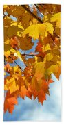 Sunlight And Shadow - Autumn Leaves Two Beach Towel