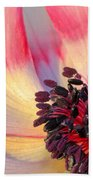 Sunlight Just Right Beach Towel by Heidi Smith