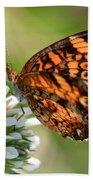 Sunlight Through Butterfly Wings Beach Towel