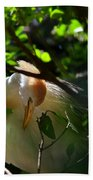 Sunlit Egret Beach Towel