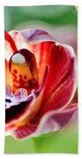 Sunlit Miniature Orchid Beach Towel by Kaye Menner