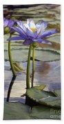 Sunlit Purple Lilies  Beach Towel