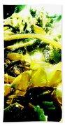 Sunlit Seaweed Beach Towel