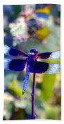 Sunning Dragonfly Beach Towel