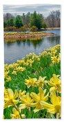 Sunny Daffodil Beach Towel