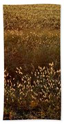 Sunrise On Wild Grass Beach Towel