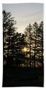 Sunrise Shines Through The Pines Beach Towel