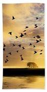 Birds Awaken At Sunrise Beach Towel