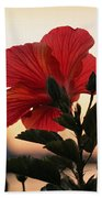 Sunset Flower Beach Towel