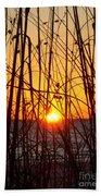 Sunset Through Grasses Beach Towel