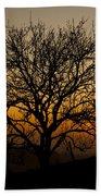 Sunset Tree Beach Towel by Anne Gilbert