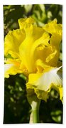 Sunshine Iris Beach Towel