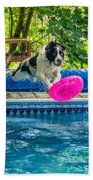 Super Dog 2 Beach Towel