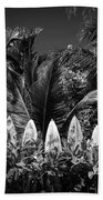 Surf Board Fence Maui Hawaii Black And White Beach Sheet by Edward Fielding