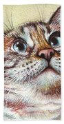 Surprised Kitty Beach Towel by Olga Shvartsur