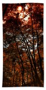 Surrounded By Autumn Beach Towel