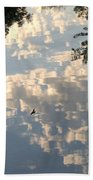 Swallow Reflection Beach Towel