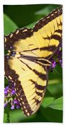 Swallow Tail Butterfly Beach Towel