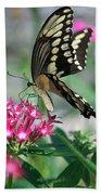 Swallowtail Butterfly 01 Beach Towel