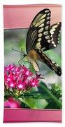 Swallowtail Butterfly 02 Beach Towel