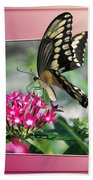 Swallowtail Butterfly 03 Beach Towel