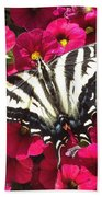 Swallowtail Butterfly Full Span On Fuchsia Flowers Beach Towel