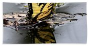 Swallowtail - Butterfly - Reflections Beach Towel