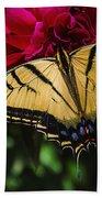 Swallowtail On Peony Beach Towel