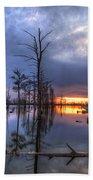 Swamp At Dusk Beach Towel
