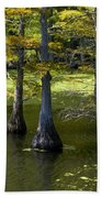 Swamp Color Beach Towel